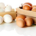 Teste para saber se o ovo está velho