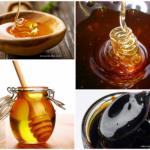 Mel, melado e melaço: qual é a diferença?